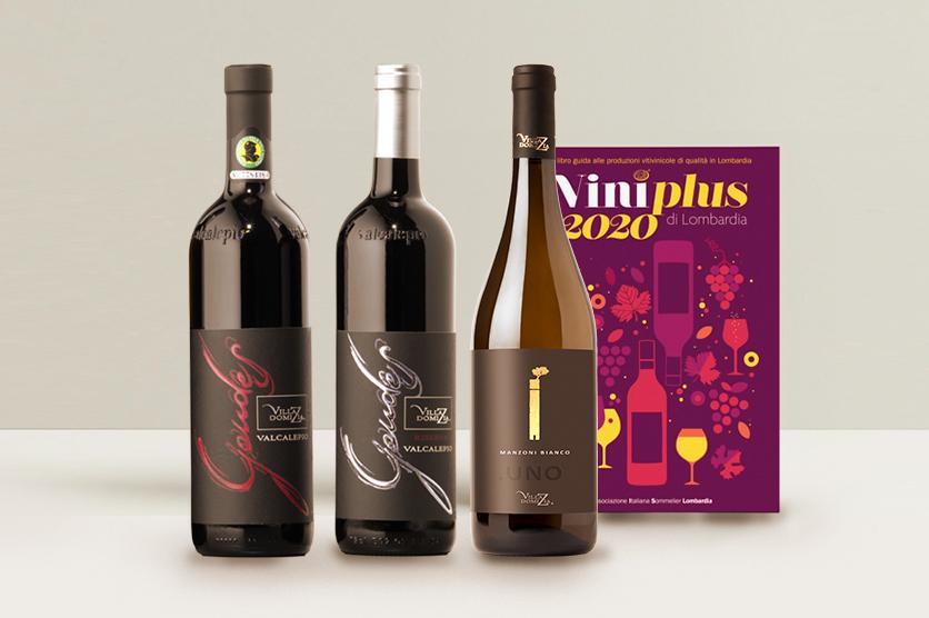 VINIPLUS 2020 POINTS OUT THREE VILLA DOMIZIA WINES