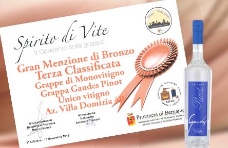Grappa Gaudes Pinot Unico Vitigno