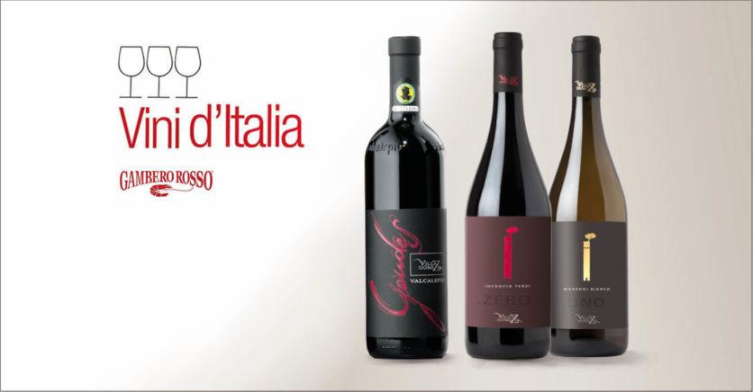 THREE VILLA DOMIZIA WINES ENTER ITALIAN WINES 2021 GUIDE BY GAMBERO ROSSO